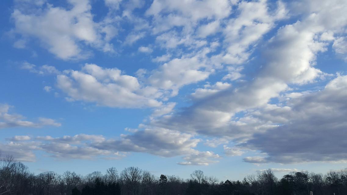 #FreeToEdit #myoriginalphoto #myphotography #beautiful #cloudsandsky #cloudphotography #cloudsandskyandtrees #skyline #beautifulphotography #sky #skyphotography #photography #photographyart #nature #naturelover #naturephotography #naturelovers #greenvillesc #greenville #southcarolina