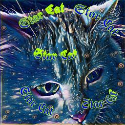 freetoedit starcat