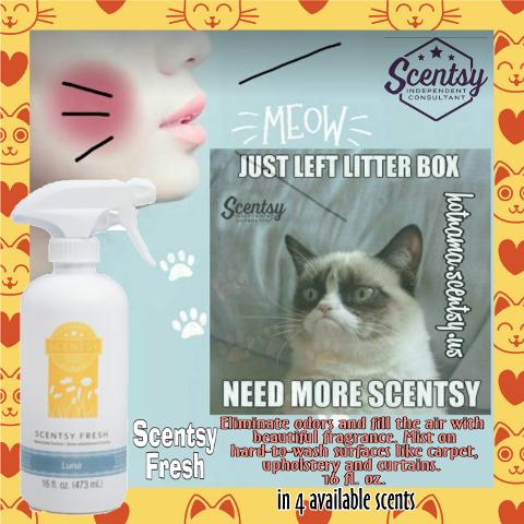 #fresh,#freshness,#catlover,#cats,#catsofinstagram,#freetoedit