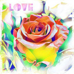 love roses flowers magiceffects beatiful