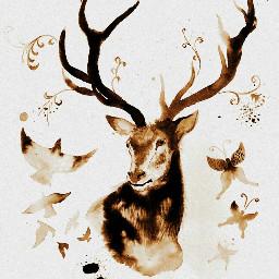 inkpainting inkwash picasa picsart antlers