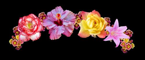 flowercrownsticker freetoedit